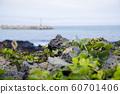 Beautiful island landscape of Jeju, Korea 037 60701406
