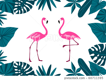 Pink Flamingo Couple with tropical leaves border. Cute exotic birds. Cartoon flat design. 60711395