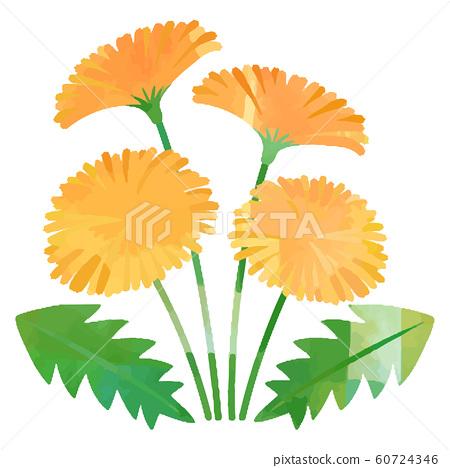 봄의 꽃 60724346