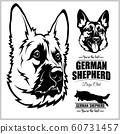 Shepherd Dog Portrait - vector illustration on white. 60731457