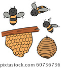 vector set of bee and honeycomb 60736736
