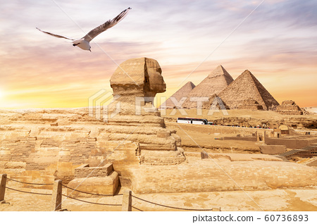 The Great Sphinx of Giza and the Pyramids in the 60736893