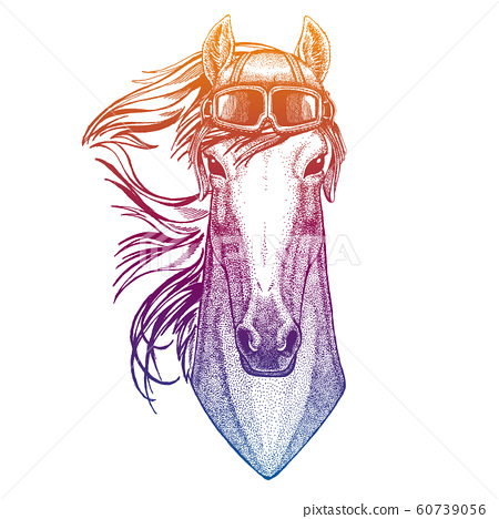 Horse, hoss, knight, steed, courser. Wild animal. Vector fashion illustration for kids. Children shirt print with biker, motorcycle symbol. 60739056