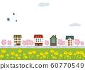 景觀時尚的城市景觀櫻花和油菜花 60770549