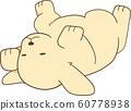 Golden Retriever Puppy (Sleep / Navel / Supine) 60778938