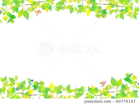 Fresh green watercolor illustration background 60779197