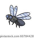 Insect fly. Vector cartoon illustration line drawing 60784428