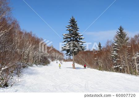 Marchen course at Sapporo International Ski Resort 60807720