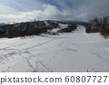 Woody course at Sapporo International Ski Resort (from below) 60807727