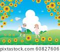Landscape of sunflower field 60827606