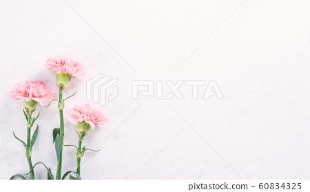 Yasuno Kaoru母親節康乃馨花粉紅色康乃馨母親節 60834325