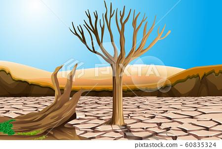 landscape of trees on the dry soil in the desert 60835324