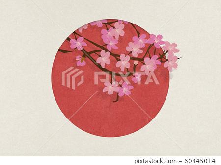 일본 국기 - 사쿠라 - 종이의 감촉 60845014