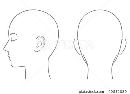 頭部輪廓 60852020