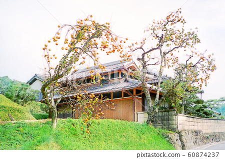 Satoyama's landscape 60874237