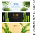 House Plants In Pot Banners Realistic Banner Set 60888422