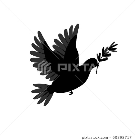 Pigeon silhouette with olive branch. Dove brid isolated on white. Symbol for peace, love, faith and 60898717