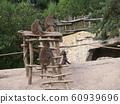 坐著和休息的猴子 60939696