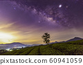 Overview of Long Coc green tea hill, Phu Tho, Vietnam. 60941059