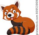 Cartoon smiling red panda on white background 60953909