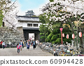 Wakayama Castle in full bloom 60994428