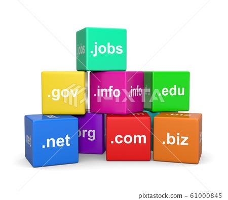 Internet Domain Names 61000845