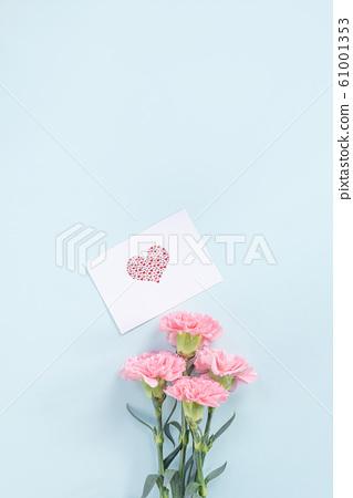 Yasuno Kaoru母親節康乃馨花粉紅色康乃馨母親節 61001353