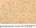 Suma root (Pfaffia paniculata) 61009877