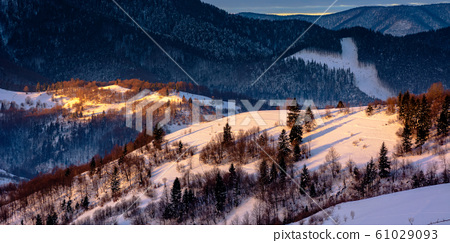 winter countryside scenery at dawn 61029093