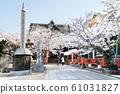 Sakura in full bloom at Kismitera 三 Wakayama 61031827