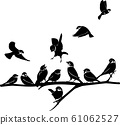 Sparrow silhouette illustration bird different pose set 61062527