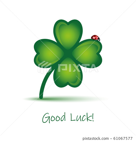good luck clover leaf with ladybug on white background 61067577