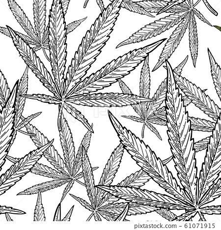 Seamless pattern with marijuana leaf. Vintage 61071915