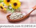sunflower seed 61085814