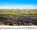 Plowed field and blue sky 61098000