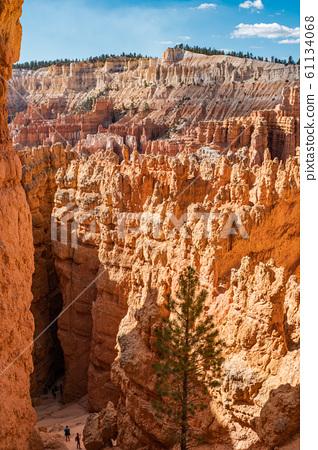 Bryce Canyon 61134068
