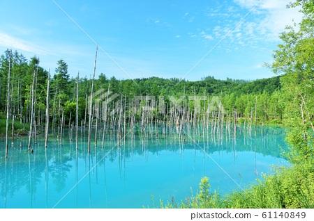 北海道藍天藍色池塘 61140849