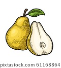 Pear whole and half with leaf. Vintage color 61168864