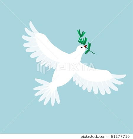 White pigeon with olive branch. Dove flying and holding a holly message. Symbol for peace, love 61177710