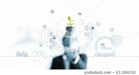 Businessman holding a tree sprout growing on coins, abstract growth investing. Finance and icon customer, banking network connection on interface, digital marketing, investment growth and business tec 61186830