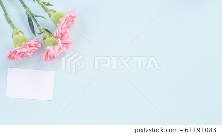 Yasuno Kaoru Mother's Day Carnation flower pink Carnation Mother's Day 61191083