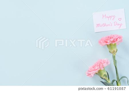 Yasuno Kaoru Mother's Day Carnation flower pink Carnation Mother's Day 61191087