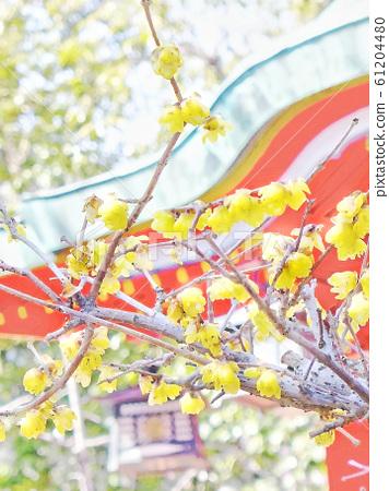 Amashiki Tenmangu Shrine and Ume-Kobe Shrine 61204480