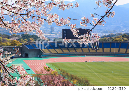 Spring of the stadium 61204550