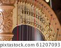 Close up detail of beautiful golden harp strings 61207093