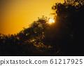 夕陽 61217925