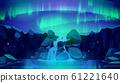 Aurora borealis in night sky and waterfall 61221640