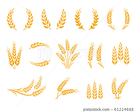 Wheat wreaths and grain spikes set icons 61224688