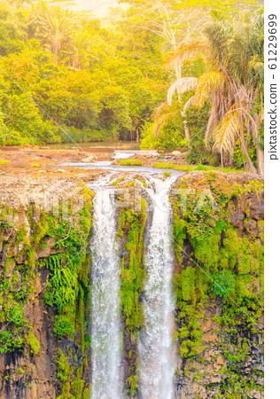 Chamarel Waterfall in lush tropical greenery of Mauritius, Indian Ocean 61229699