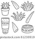 vector set of aloe vera and aloe vera product 61230919